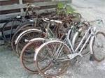 ophaling van oude fietsen en ijzer in limburg,