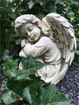Prachtige zittende engel, vol detail, terracotta old-white