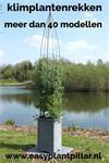 klimplantenrekken in plantenbakken en bloembakken