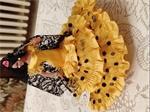 Oude flamenco danseres spanje