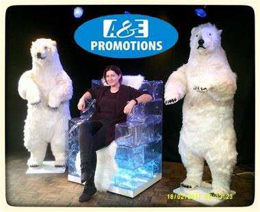 Grote foto bewegende ijsbeer verhuur sneeuwpanter gent diversen overige diversen