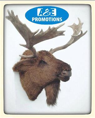 Grote foto winterfeest artikelen berghut eland verhuur gent hobby en vrije tijd evenementen