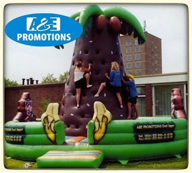 Grote foto klimpalm go bananas huren vlaams brabant diensten en vakmensen bedrijfsuitjes