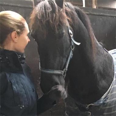 Grote foto sprekende gitzwarte bereden friese merrie dieren en toebehoren paarden