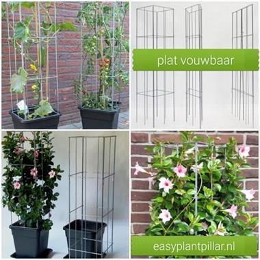 Grote foto plantensteunen voor klimplanten klimrozen tuin en terras klimplanten