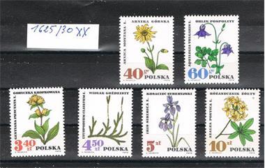 Grote foto polen 12 postzegels en munten overig