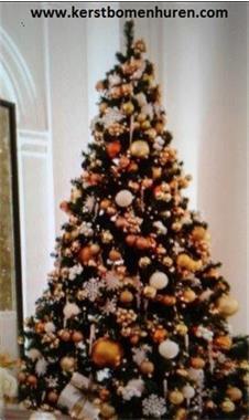 Grote foto kerstboom levering voor bedrijven e.a. diensten en vakmensen themafeestjes