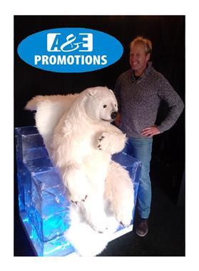 Grote foto groot sneeuwpop verhuur sint niklaas hasselt diensten en vakmensen algemeen