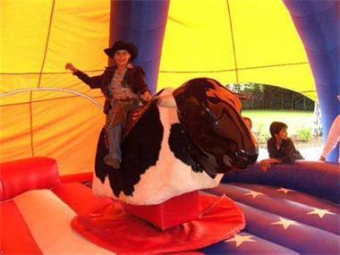 Grote foto rodeostier te huur voor elk feest diensten en vakmensen feesten