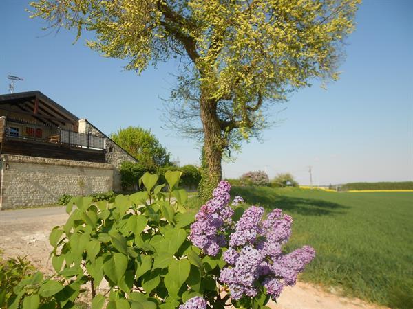 Grote foto landelijk gelegen te indre et loire vrij uitzicht vakantie frankrijk