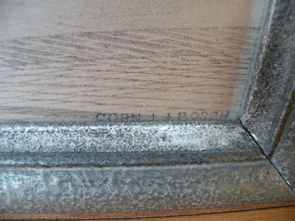 Grote foto lithografie corn. j. j. bosch. afm. 70 x 54 cm. antiek en kunst litho en zeefdrukken