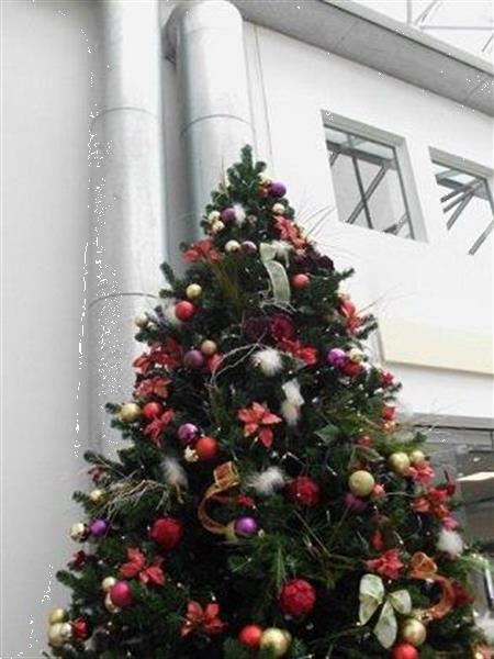 Grote foto huurkerstbomen voor bedrijven... incl levering diensten en vakmensen feesten