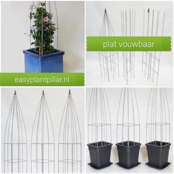 Grote foto webwinkel voor verticaal tuinieren verticale tuin tuin en terras klimplanten