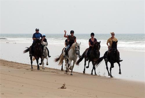 Grote foto paardrijvakanties in andalusie vakantie spaanse kust