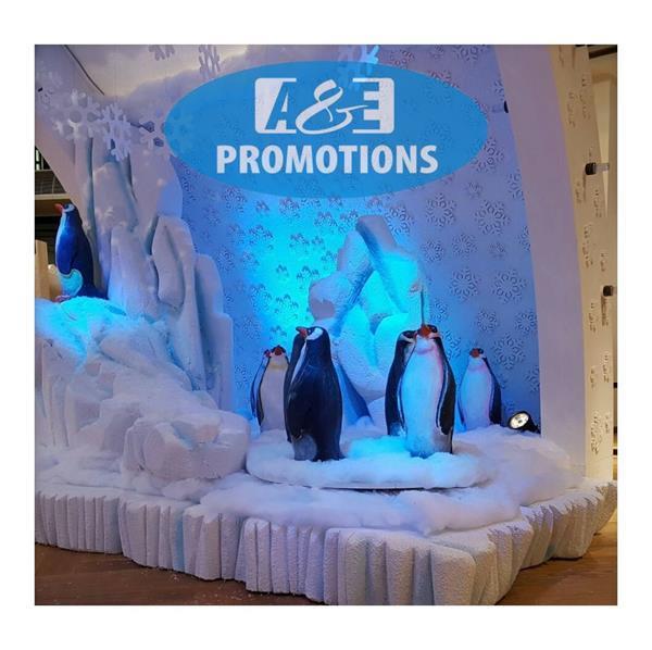 Grote foto ijsmuur huren gent brugge ijsbeer verhuur diensten en vakmensen entertainment