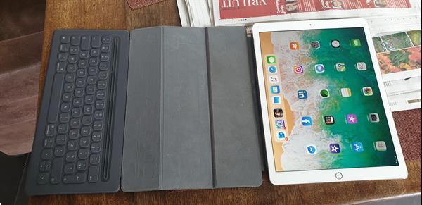 Grote foto apple ipad pro 12 9 inch 256 gb wifi 4g gold computers en software tablets apple ipad