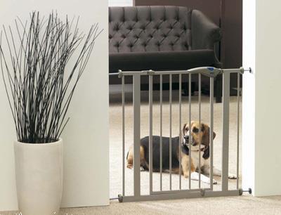 Grote foto hondenhek dog barri r door 75cm dieren en toebehoren toebehoren