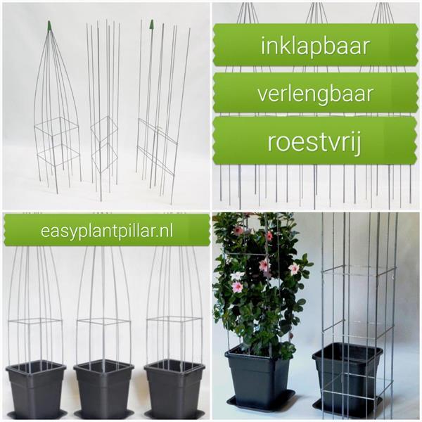 Grote foto paalklem voor klimplanten klimplantenklem tuin en terras tuinhout en palen