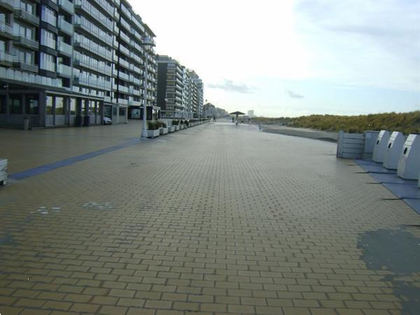 Grote foto vlakbij zeedijk nieuwpoort grote studio zonnekant vakantie belgi