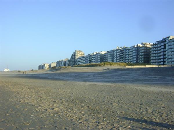 Grote foto grote studio nieuwpoort zonnekant vlakbij zeedijk vakantie belgi