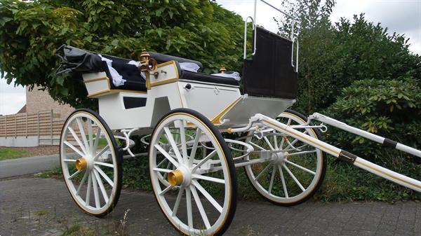 Grote foto te koop antieke eenspan paarden trouwkoets dieren en toebehoren rijtuigen en koetsen