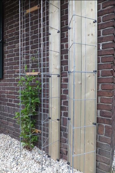 Grote foto klimplanten tegen schuttingen en muren. tuin en terras bloemen en planten