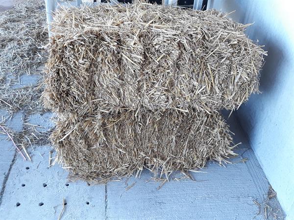 Grote foto hooi stro en voordroog agrarisch hooibouw