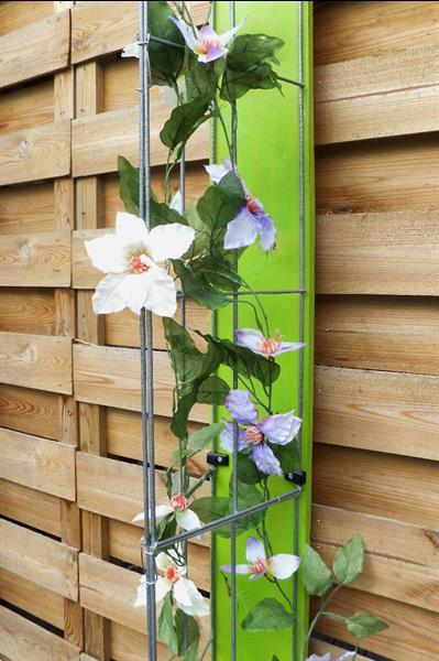 Grote foto klimplanten tegen tuinschermen en schuttingen tuin en terras bloemen en planten