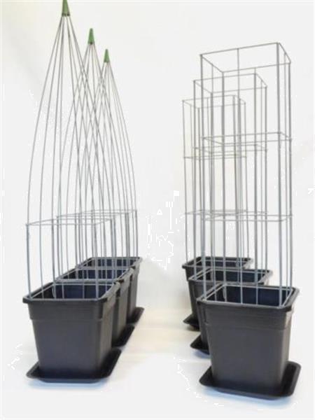 Grote foto verticale tuinhaag klimplant tuin terras balkon. tuin en terras klimplanten
