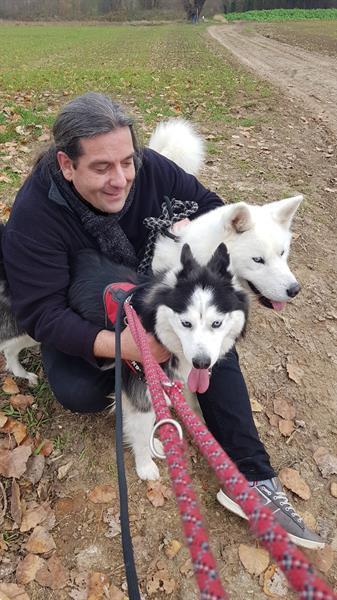 Grote foto hondenuitlater diensten en vakmensen honden verzorging oppas en les