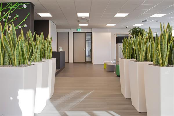 Grote foto te huur kantoorruimte de ooyen 13a geldermalsen huizen en kamers bedrijfspanden