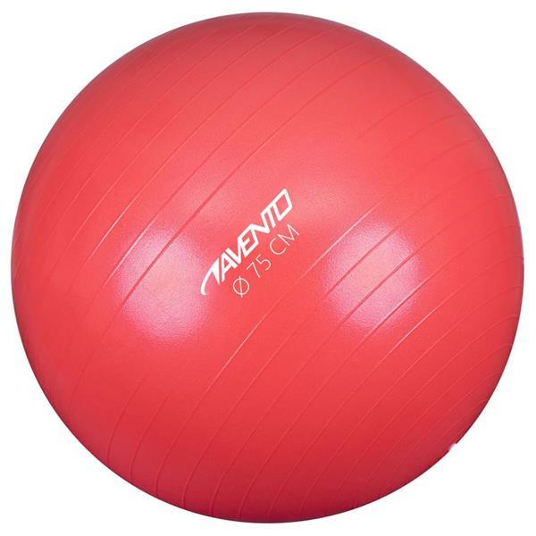 Grote foto avento ballon de fitness d exercice diam tre 75 cm rose sport en fitness fitness