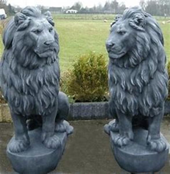 Grote foto set grote leeuwen tuin en terras tuinbeelden en tuinkabouters