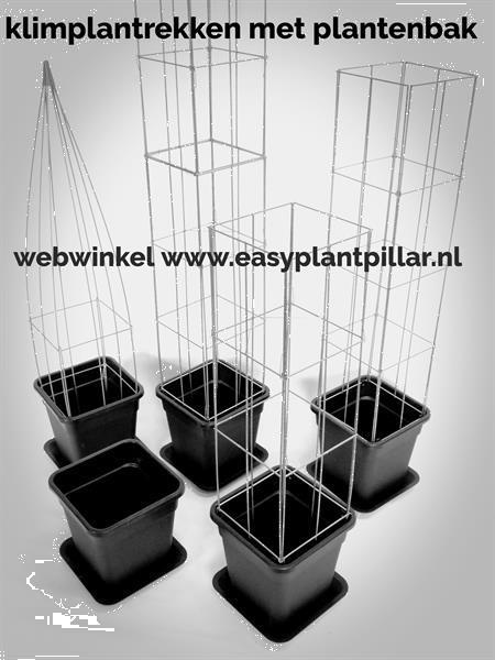 Grote foto klimplantrek modellen 2021 voor clematis jasmijn tuin en terras bloemen en planten