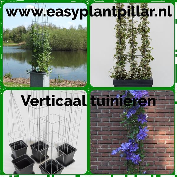 Grote foto plantenrek plantrekken plantrek plantenrekken tuin en terras bloemen en planten