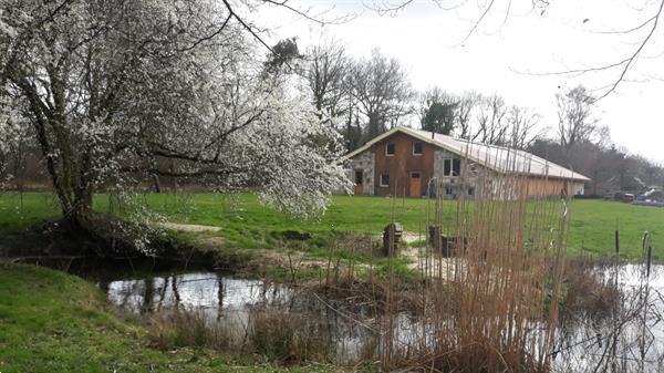 Grote foto natuurhuisje in ambt delden bentelo vakantie nederland midden